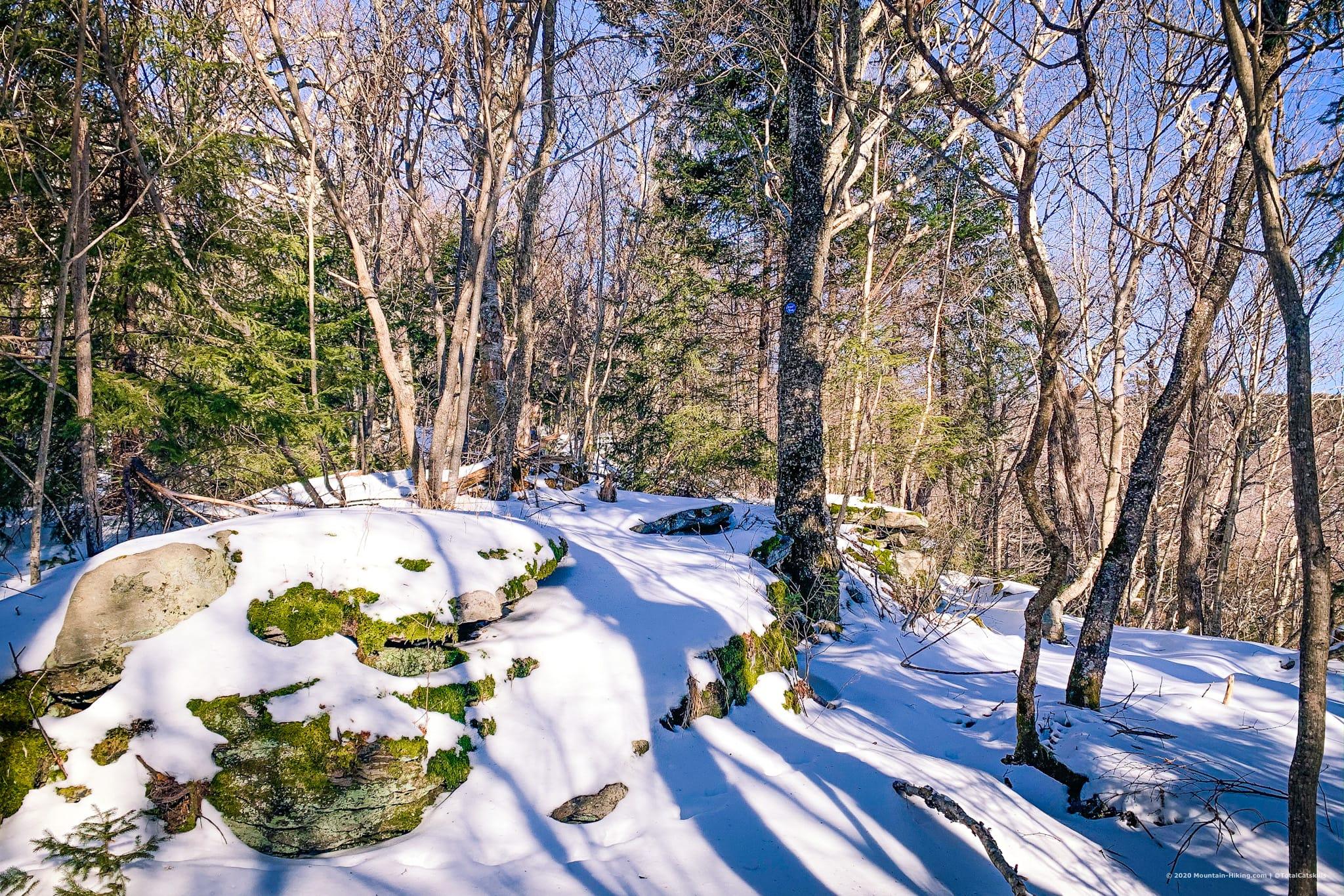 trail, rocks, trees, snow