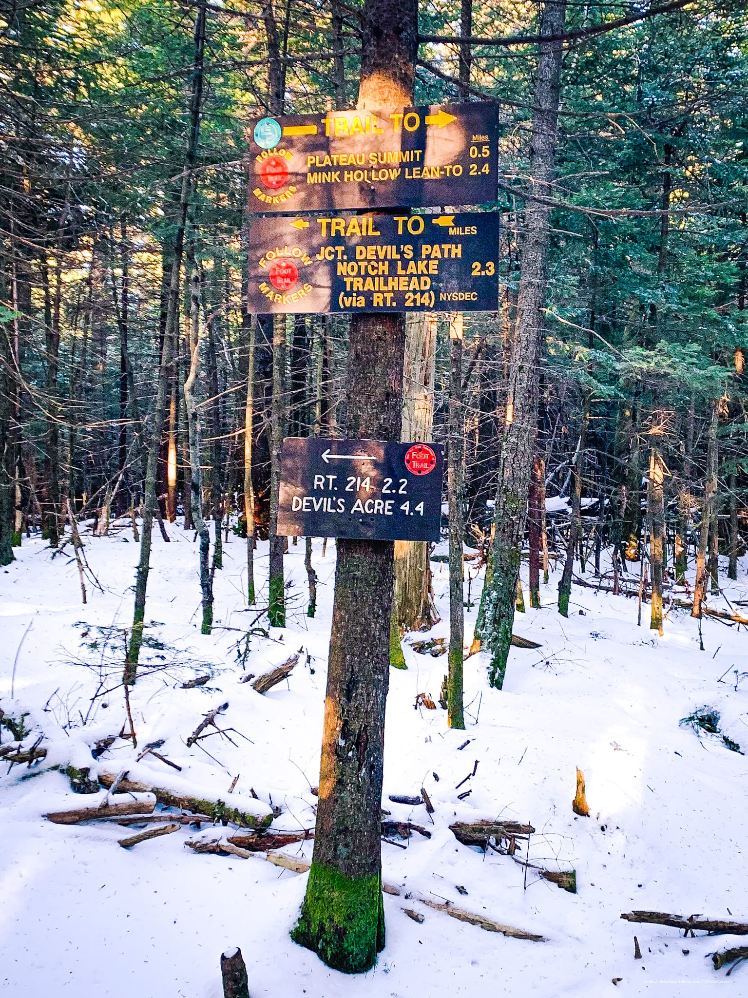 Trail intersection signposts