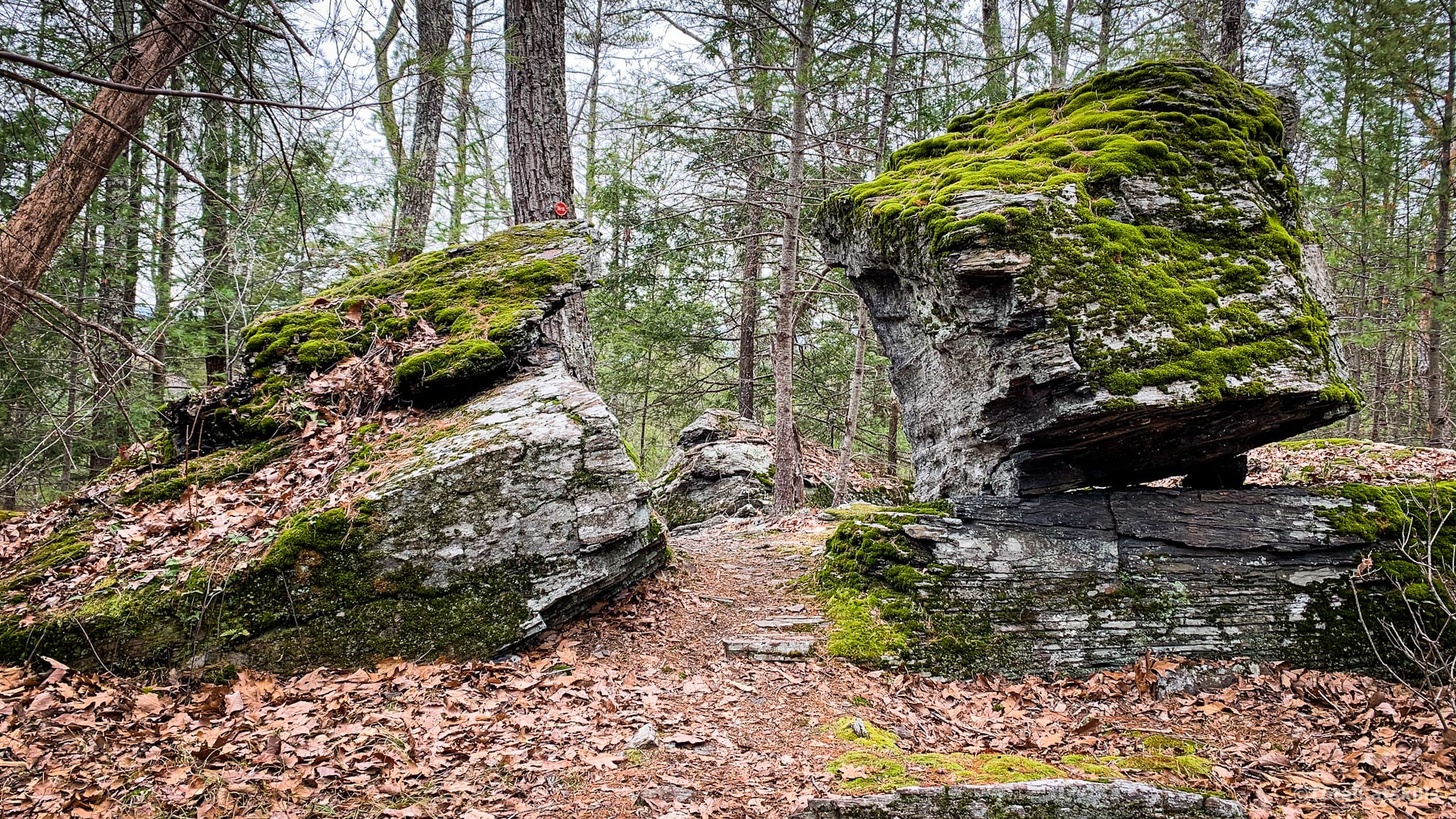 Onteora Lake split boulder