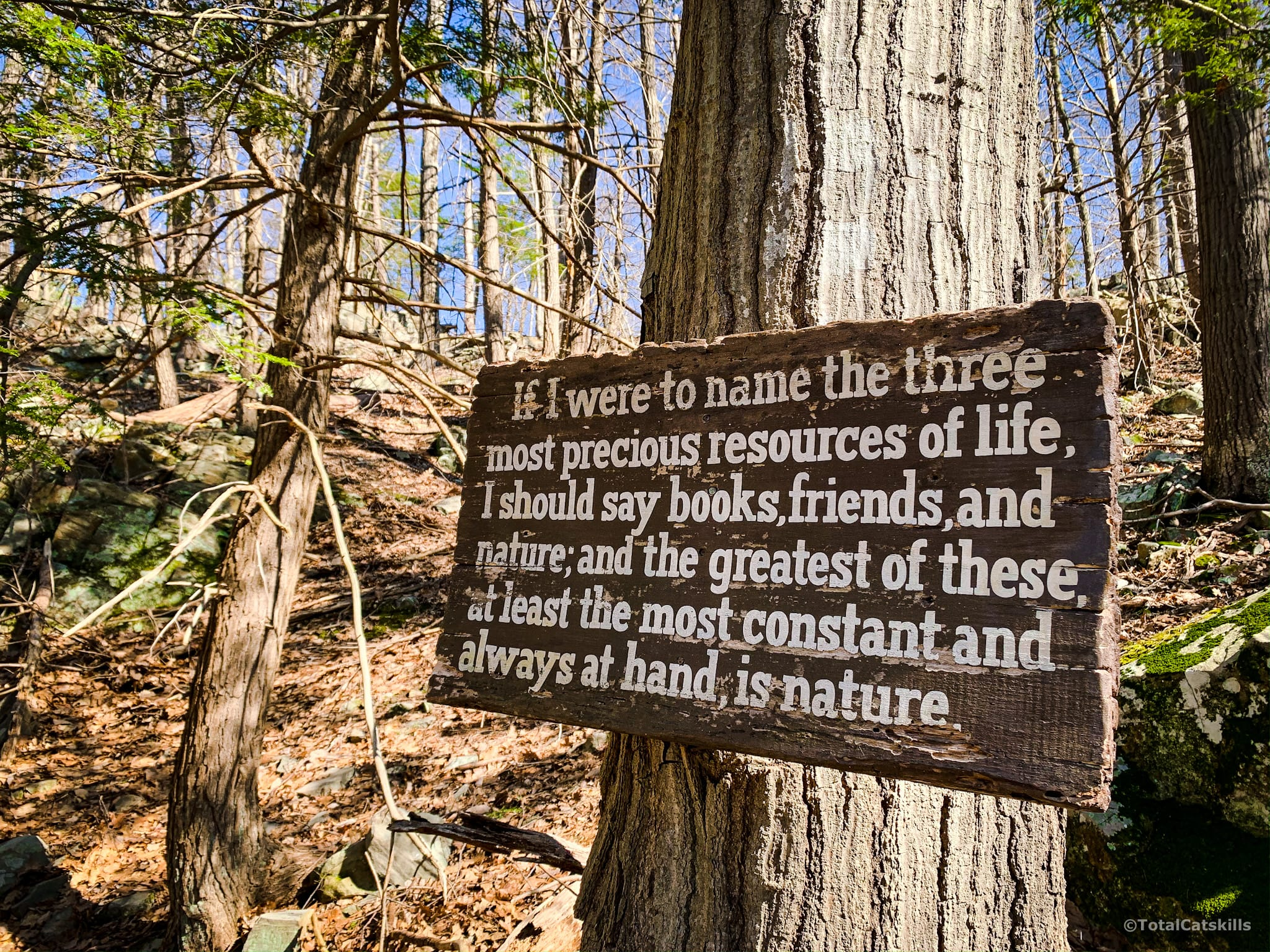 Burroughs quote on a wooden plaque