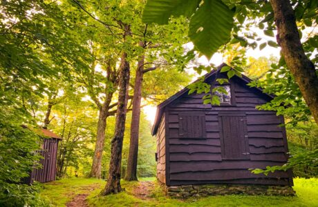 cabin in woods and small wooden outhouse