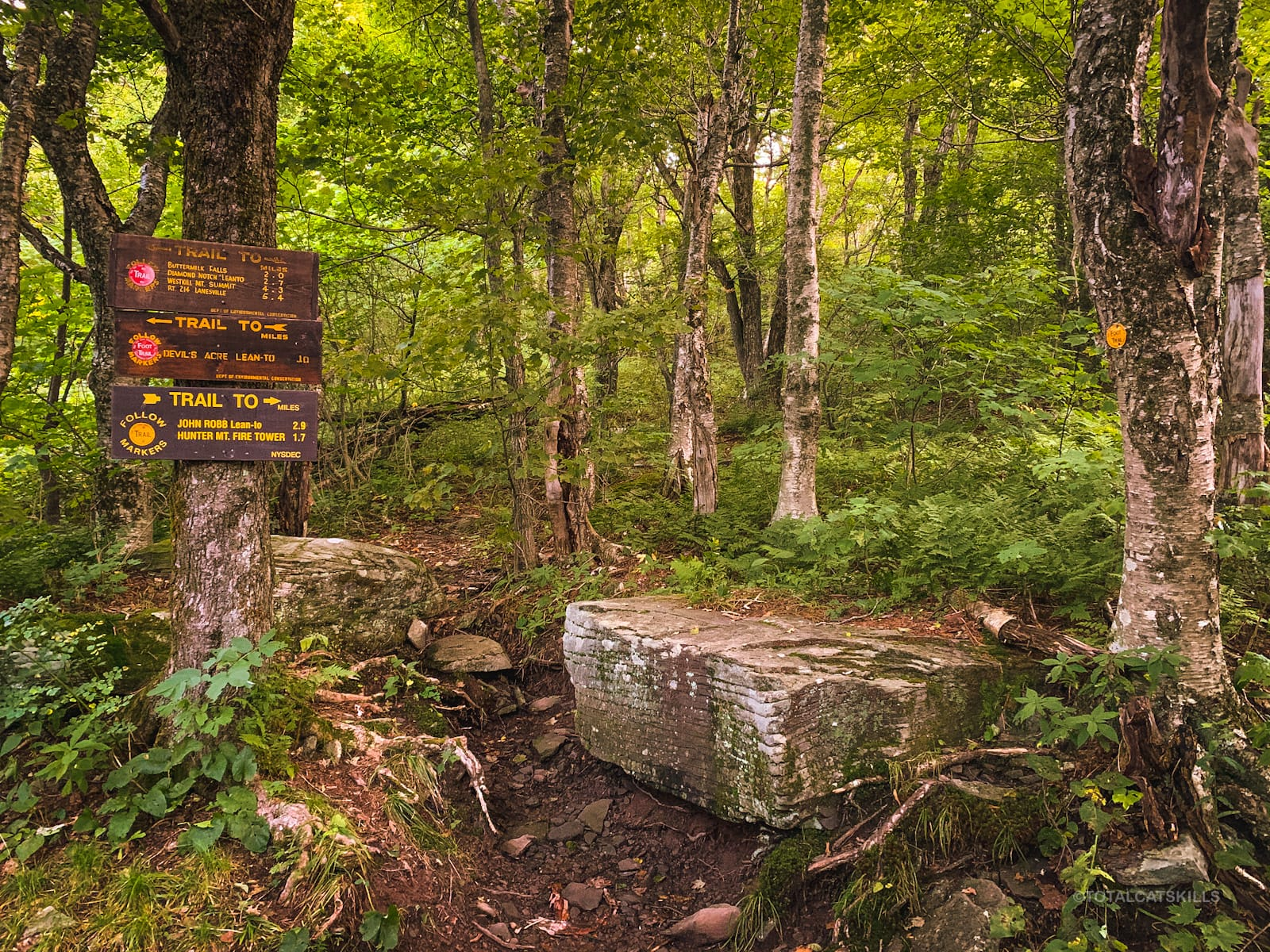 trail junction / trail signs