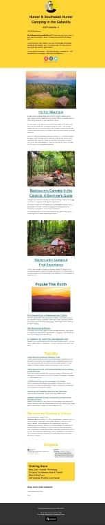 Email Newsletter Screenshot