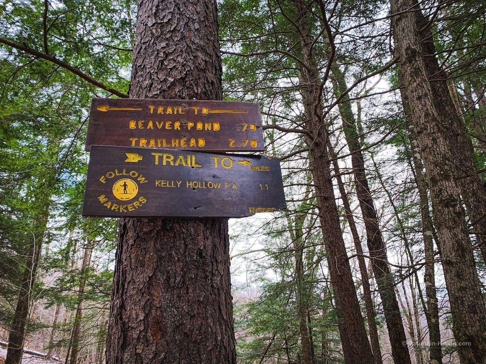 signposts on tree